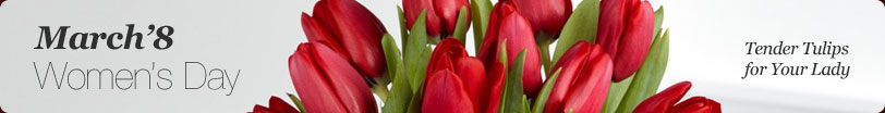 March'8 - Women's Day. Tender Tulips for Your Lady